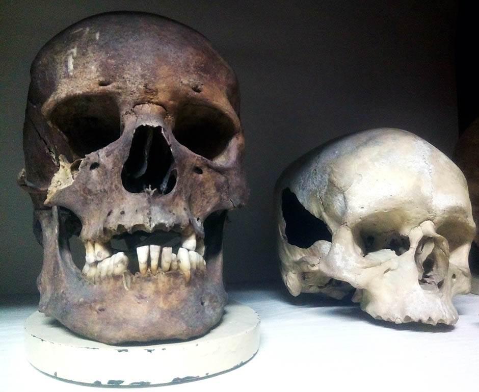 Institutu za anatomiju Medicinskog fakulteta 21.jpg