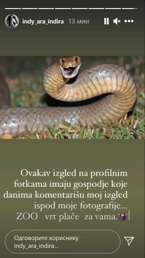 indi aradinović komentar ženama koje je prozivaju na instagramu - slika zmije
